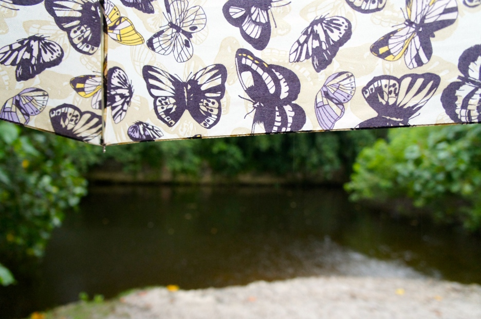 gettingcaughtintherain_umbrella