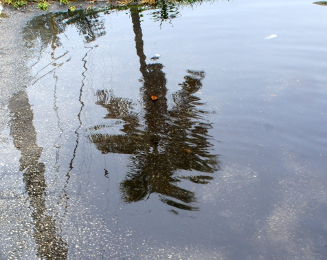 thingstoloveaboutFLL_puddles